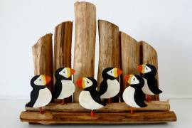 Puffins on Groynes image